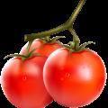 Про томати