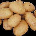 Про картоплю